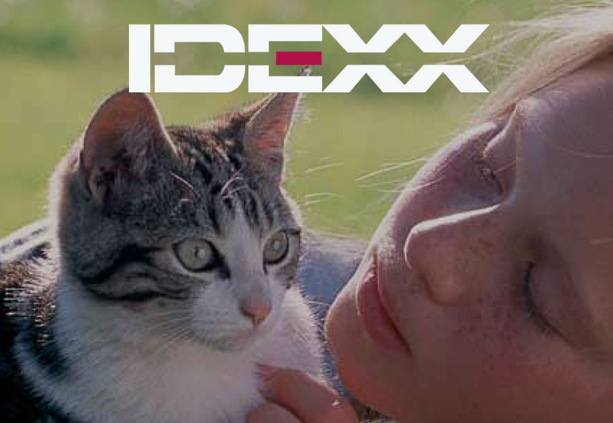 Brochures and package design for IDEXX