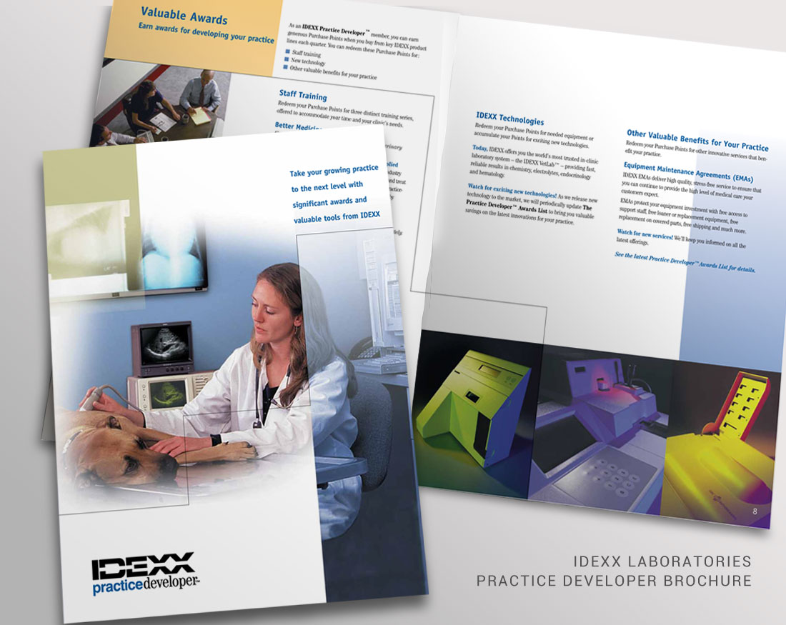 Wood and Company's brochure design for IDEXX Practice Developer